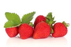fruktjordgubbe Royaltyfri Fotografi