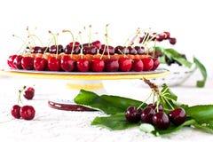 Fruktkaka med söta körsbär och vaniljsås. Royaltyfri Bild