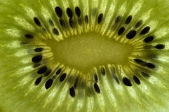 fruktkiwi Royaltyfri Fotografi
