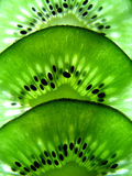 fruktkiwimakro Royaltyfri Fotografi
