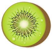 fruktkiwivektor Royaltyfria Bilder
