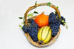 Fruktkorg Royaltyfri Bild