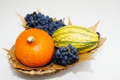 Fruktkorg Royaltyfri Foto