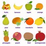 Fruktkort för att lära engelska royaltyfri illustrationer