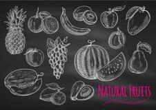 Fruktkrita skissar symboler på svart tavla royaltyfri illustrationer