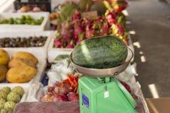 Fruktlager med en vattenmelon på en skala royaltyfri fotografi