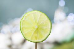 Fruktlimefruktskivor fotografering för bildbyråer