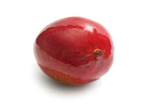 fruktmango Royaltyfria Foton