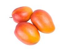 fruktmango mogna tre Royaltyfri Bild