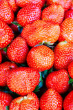 Fruktmarknad för öppen luft i byn Royaltyfri Bild