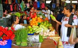 fruktmarknad mayan mexico yucatan Arkivbild
