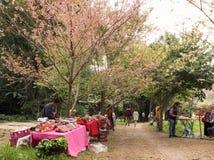 Fruktmarknad med blomman Arkivfoto