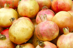 fruktmegranate Arkivfoton