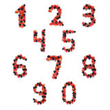 Fruktnummer Arkivbilder