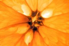 fruktorange Royaltyfria Foton