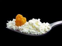 fruktovo десерта молокозавода Стоковое Изображение