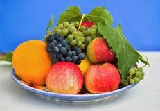 Fruktplatta Royaltyfria Foton