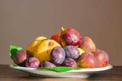 Fruktplatta Fotografering för Bildbyråer