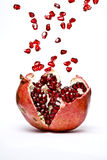 fruktpomegranate Royaltyfri Foto
