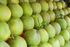 fruktpomelo Royaltyfri Foto