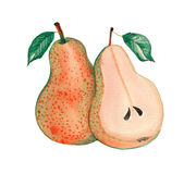 Fruktporslinpäron Arkivbilder