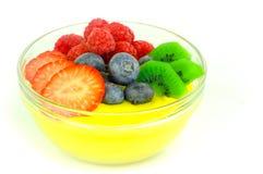 Fruktpudding Arkivfoton