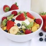 Fruktsädesslag med yoghurt och jordgubbar royaltyfria foton
