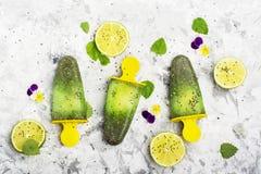 Fruktsaft för pepparmint för hemlagad vegetarisk glassisglassfrukt dekoreras citrus med chiafrö med ätliga blommor av Royaltyfri Fotografi