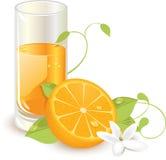 fruktsaftorange vektor illustrationer