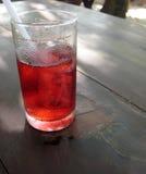 fruktsaftredroselle Arkivfoto