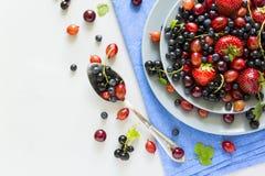 Fruktsallad med jordgubben, blåbäret, körsbäret, krusbäret och den svarta vinbäret på trägrå bakgrund Royaltyfri Fotografi