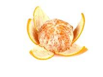 Fruktsammansättning av tangerinen Royaltyfri Fotografi