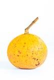 fruktsantol Arkivfoton