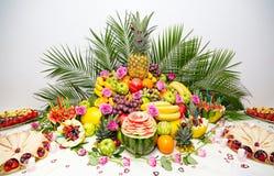 Fruktskärm Arkivbild