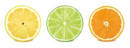 Fruktskivauppsättning: citron limefrukt, apelsin arkivbild