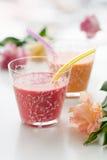 fruktsmoothies Royaltyfria Bilder
