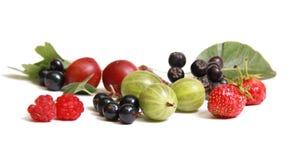 fruktsommar Arkivbild