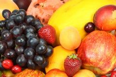 fruktsommar Royaltyfri Bild