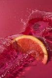 Fruktspash Royaltyfria Bilder