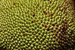 fruktstålar fotografering för bildbyråer