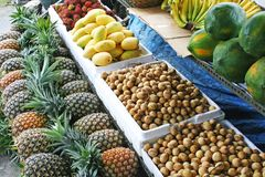 fruktstand Arkivbild