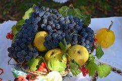 Fruktstilleben på tabellen royaltyfri fotografi