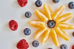 Fruktstjärna Fotografering för Bildbyråer