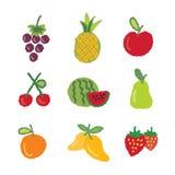 Fruktsymbolssamling Stock Illustrationer