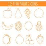 Fruktsymbolsuppsättning Färgrik mall för att laga mat, Royaltyfri Bild