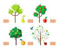 Fruktträd äpple, päron, apelsin, blomningträd vektor illustrationer