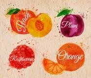 Fruktvattenfärgpersika, hallon, plommon, apelsin in Arkivbild