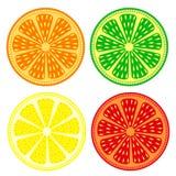 Fruktvektoruppsättning av citruns: apelsin limefrukt, citron, grapefrukt, detaljerade symboler? isolerat över vit bakgrund vektor illustrationer