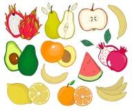 Fruktvektoruppsättning tecknad filmcommandertryckspruta hans illustrationsoldatstopwatch Sommarsamling Arkivbild
