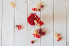Frullati delle fragole e dell'uva passa Immagini Stock